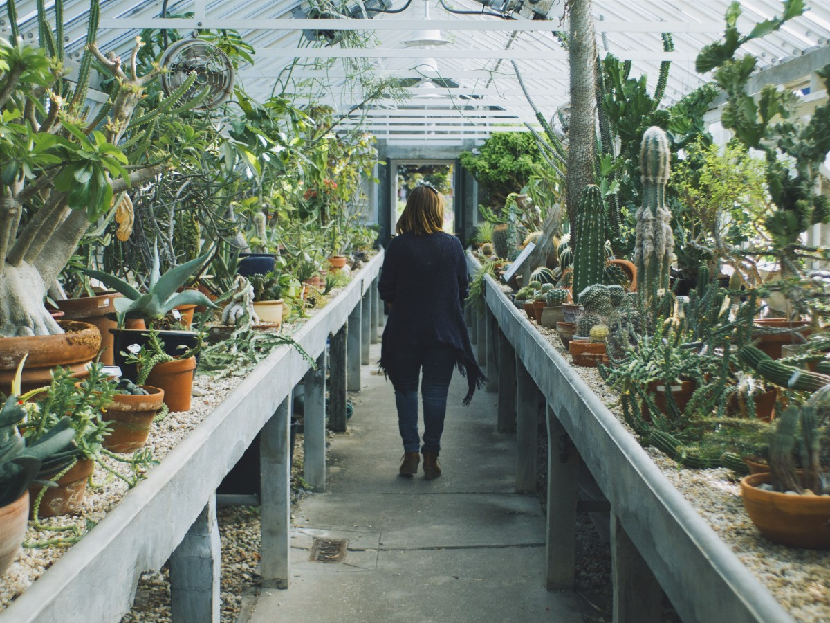 Nursery and Greenhouse Worker